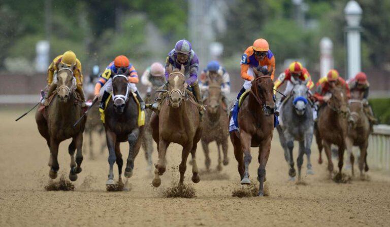 ¿Qué les sucede a los caballos de carreras después de su jubilación?
